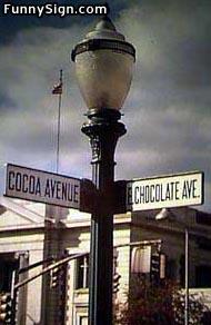 003_cocoa1